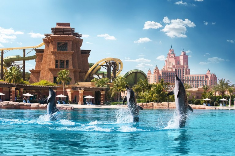 Dolphin Bay - Atlantis The Palm - Dubaj